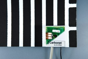 Carbonet inbraakbeveiligingssysteem